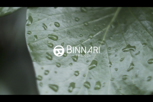 Binnari Project Nirvana